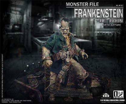 COO Models Frankenstein Birth Version