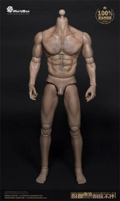 World Box Thick Chest and Broad Shoulder Man Action Figure Body 1/6 Scale