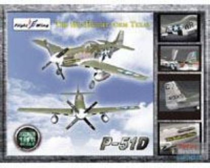 Flight Wings 1/18 P-51D WWII USAF 355th Fighter Group The Hun Hunter From Texas