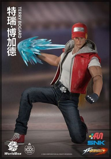 World Box The King of Fighters Terry Bogard